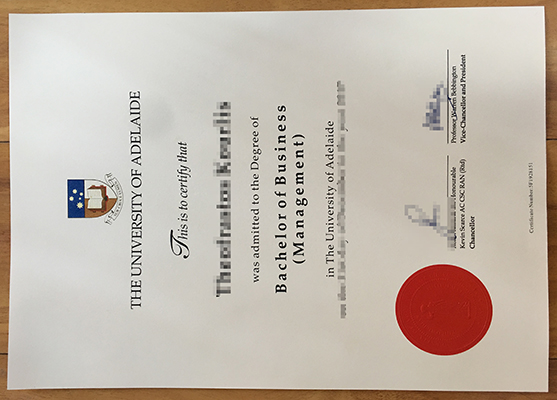 The University of Adelaide fake diploma sample