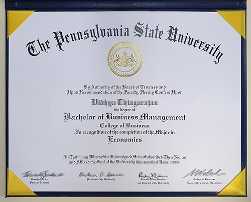 Sale of high imitation PSU diploma