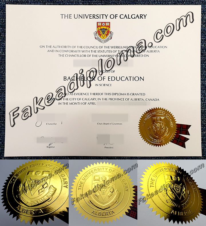 fake University of Calgary degree certificate