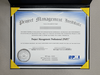Fake PMI Certificate(Project Management Institute)
