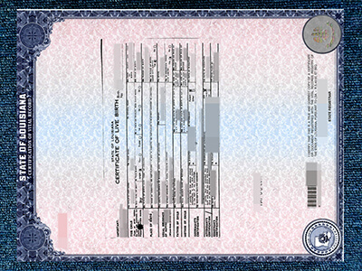 Conduct Birth Certificates In United States