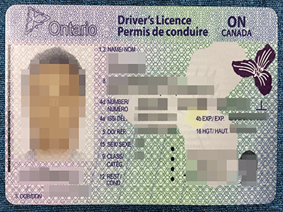 Can I Apply Ontario Drivers Licence Online?