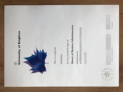 Running A Fake University of Brighton Degree Certificate Online
