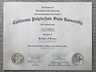 Copy Fake California Polytechnic State University Diploma