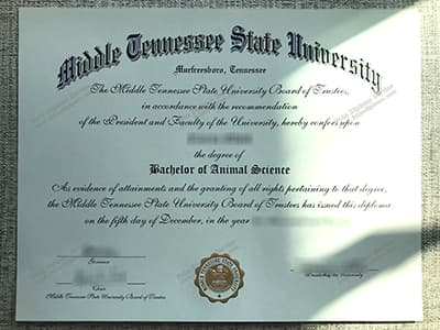 Buy Fake MTSU Diploma, Fake Middle Tennessee State University Degree Certificate