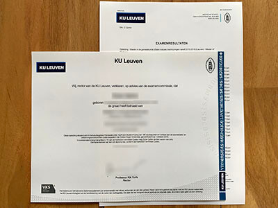 The Process of Purchasing A University of Leuven Diploma