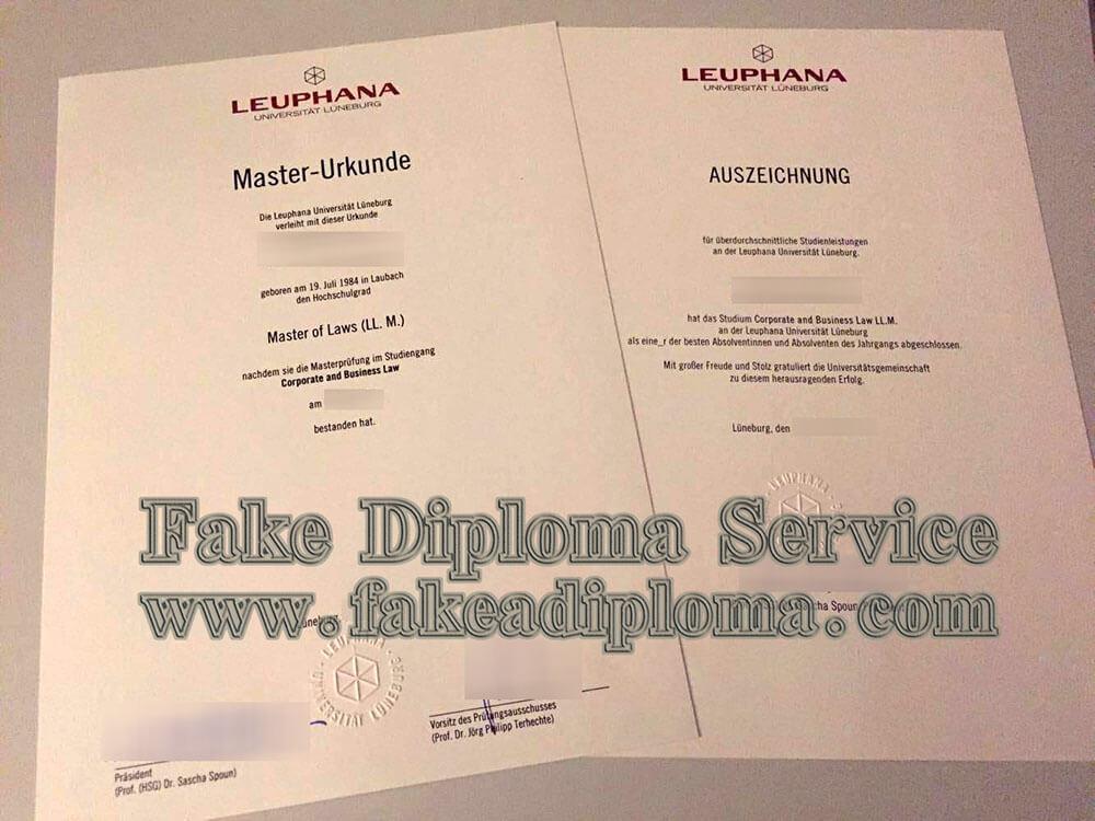 Leuphana Universität Lüneburg diplom, Leuphana University of Lüneburg diploma