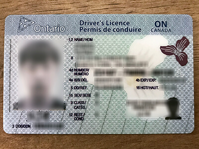 Obtain an Ontario driver's license within 10 days