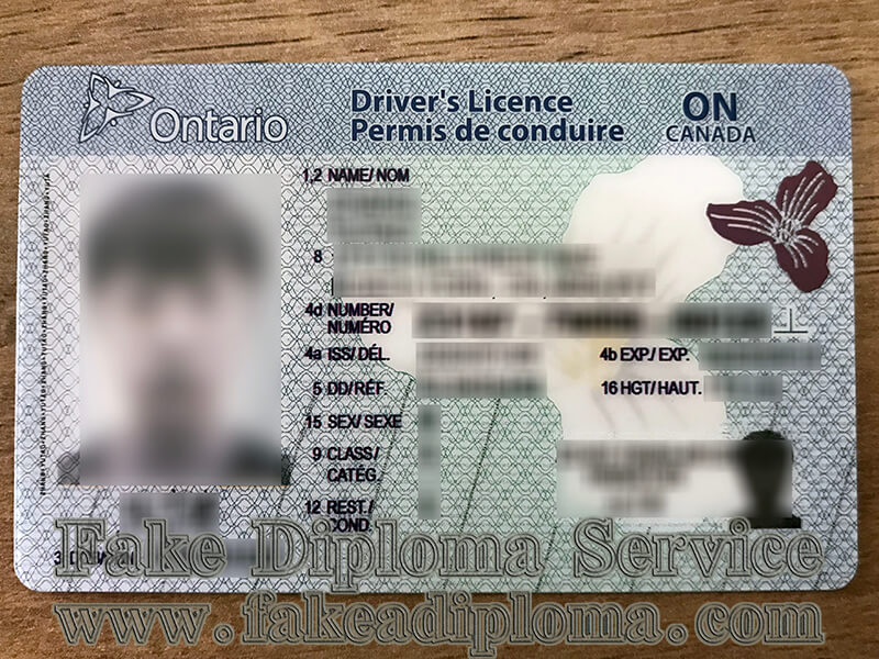buy Ontario Driver's Licence