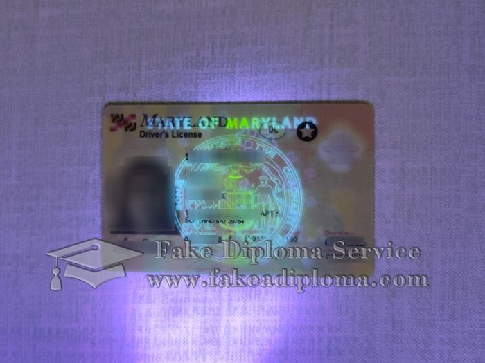 Maryland driver's license, Maryland driver license, fake Maryland driving licence, fake driving license card,