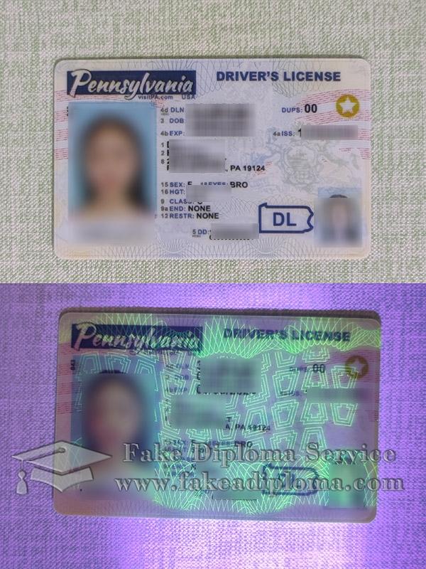 Pennsylvania driver's license, fake Pennsylvania driver license, buy Penn State driving permit,