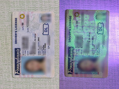 How much it costs to make a fake Pennsylvania driver's license