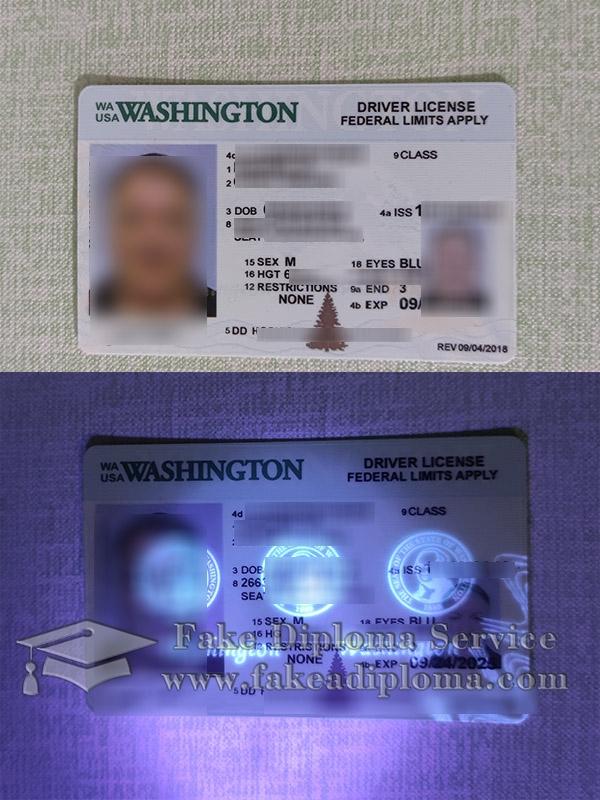 Washington driver license, Washington driving license, Washington driving card, USA driver license,