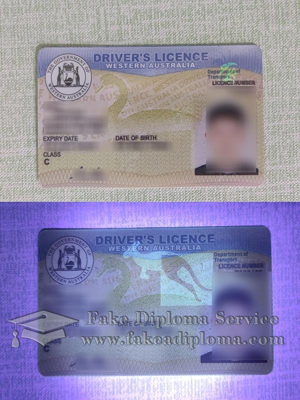 Western Australia driver's licence, Western Australia driver licence, Western Australia driving licence,